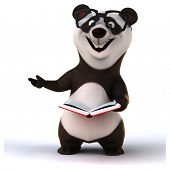 image of panda  - Fun panda - JPG