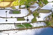 picture of ifugao  - Amazing abstract texture of rice terraces fields with sky colorful reflection in water - JPG