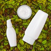 picture of cosmetic products  - Cosmetic skin care products in dry leaves - JPG