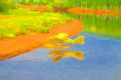pic of float-plane  - Yellow float plane tied up on river bank in Alaska - JPG