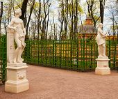 picture of garden sculpture  - Ancient sculptures in the Summer Garden in St - JPG