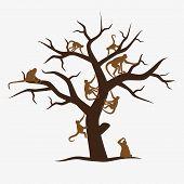 foto of monkeys  - brown monkey tree with a lot of monkeys - JPG