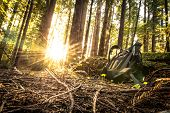 stock photo of redwood forest  - Hiker Backpack in the Sunny Forest - JPG