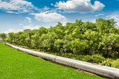 picture of petroleum  - Petroleum Pipeline - JPG