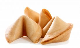 picture of oracle  - Chinese fortune cookie with blank paper strip isolated on white background - JPG