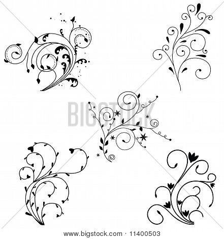 Floral background elements on white background
