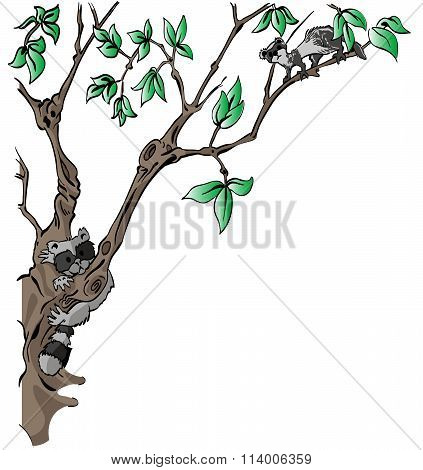 Critters In Tree Background