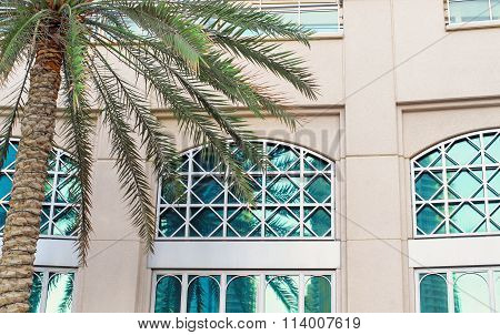Detail Of Mediterranean Architecture, Building Made Of Lime Stone In The Afternoon Light And Palm Tr