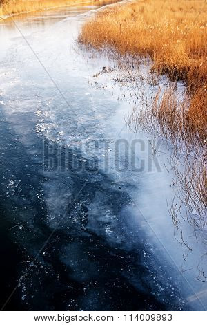 Golden Dry Reed On The Frozen Blue Riverbank In Winter With Melting Ice In The Fairway