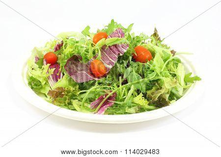 Healthy Garden Salad