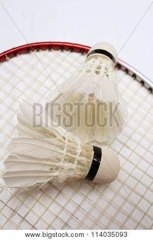 Shuttlecock And Badminton Racket On White Background.