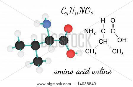 C5H11NO2 valine amino acid molecule