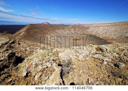 In Los Volcanes Volcanic Timanfaya  Rt Flower Bush