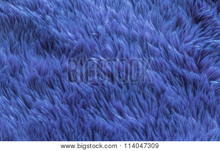 Closeup Blue Carpet Texture Background