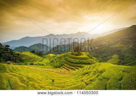 Hoang Su Phi, Ha Giang, Viet Nam