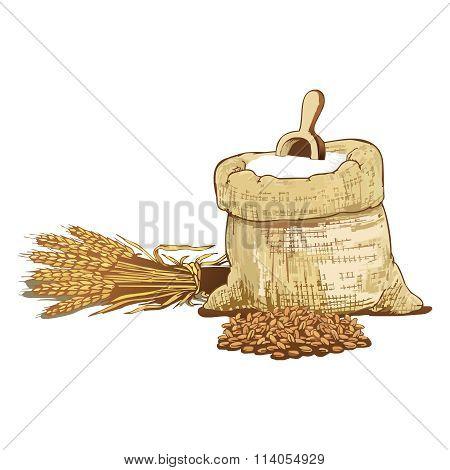 Vector Whole Wheat Grain and Flour with Hemp bag