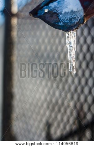 Icicle Melts In The Sun