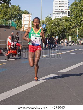 Bezunesh Bekele at Berlin Marathon 2015