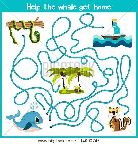 Cartoon Of Education Will Continue The Logical Way Home Of Colourful Animals.help The Whale To Swim