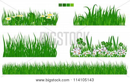 Illustrated vector green grass with flower and leaf set