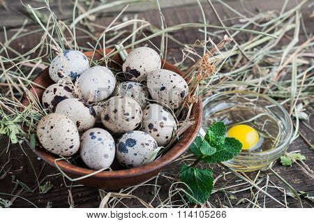 Quail Eggs On The Plate With The Hay