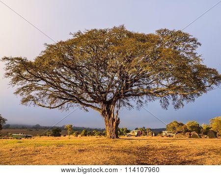 Campsite In Ngorongro