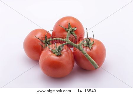 Tomatoes On White Background.