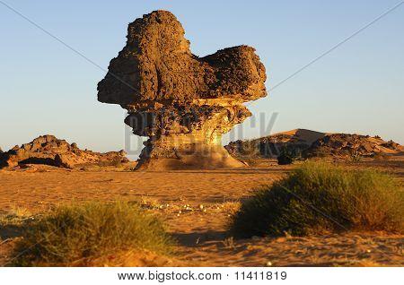 Sandstone rock mushroom