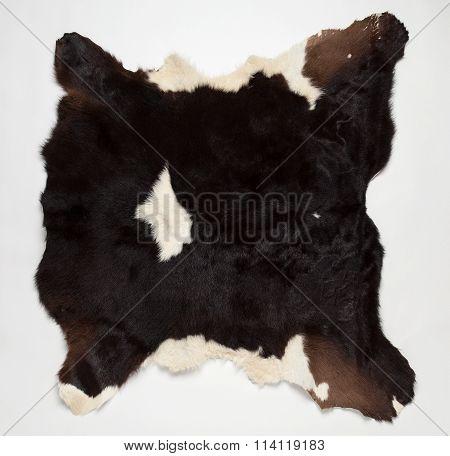 Cow Fur (skin)