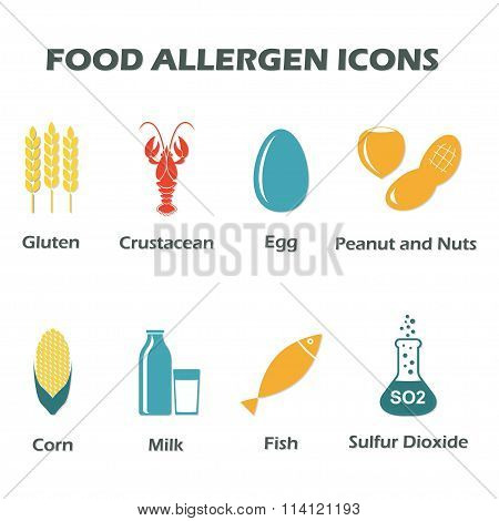 Allergen free products symbols. Food allergen icons set. Colorful vector illustration.