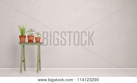 Three plants in pots in a corridor in front of a wall (3D Rendering)