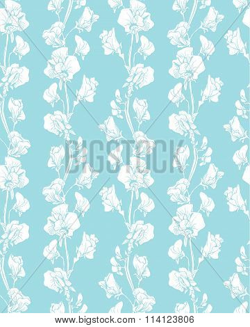 Seamless Pattern With Realistic Graphic Flowers - Sweet Pea - Hand Drawn Background In White And Blu