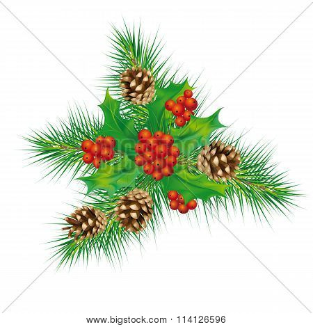 Christmas mistletoe, cones, pine needles
