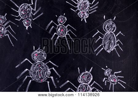 Arachnophobia: Fear Of Spiders