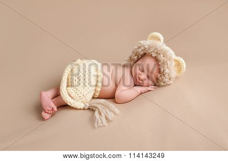 Newborn Baby Wearing A Lion Costume