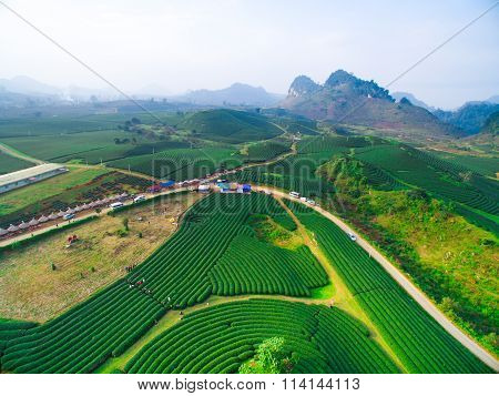 Aerial view of tea hills in Moc Chau highland, Son La province in Vietnam