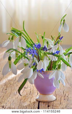 Snowdrops in vase on wooden background