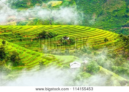 Terraced fields on hills looming clouds