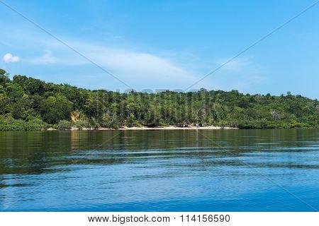 Wetlands in Amazon, Brazil