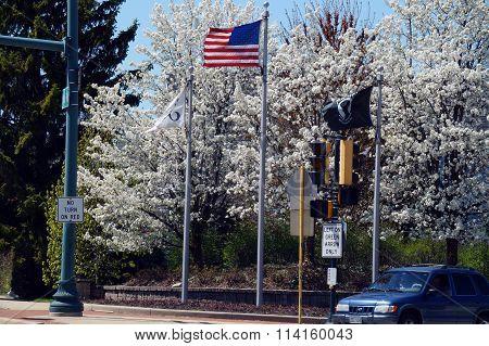 Flags on a Street Corner