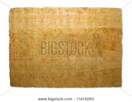 Old piece of papyrus texture