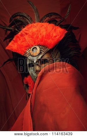Mannequin in mask with red feathers