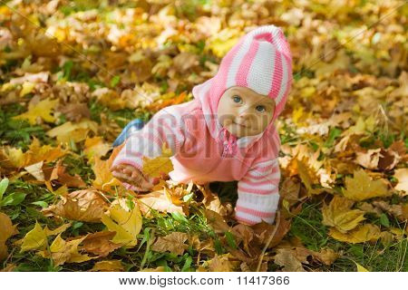 Girl Playing With Autumnal Leaves