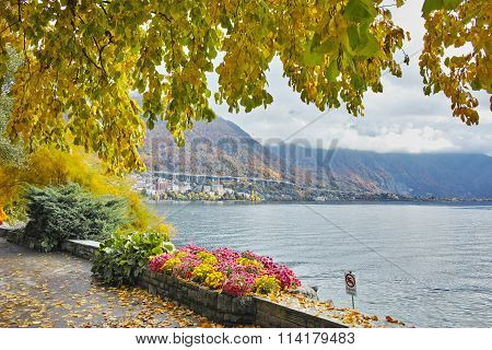 Panorama of Lake Geneva and Alps, Montereux, canton of Vaud