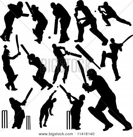 cricket players collection