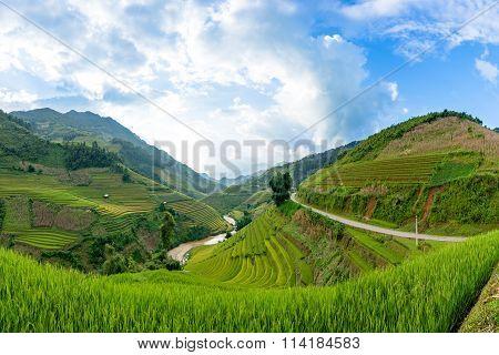 Rice fields on terraced of Mu Cang Chai,Vietnam