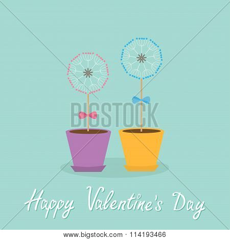 Happy Valentines Day. Love Card. Two Dandelion Blowball Flower Set With Hearts In The Pots. Bows
