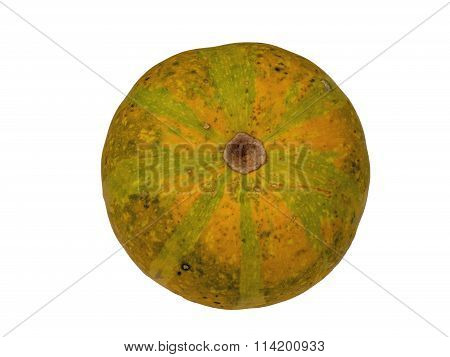 Pumpkin 8 isolated