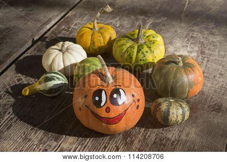 Happy gourd