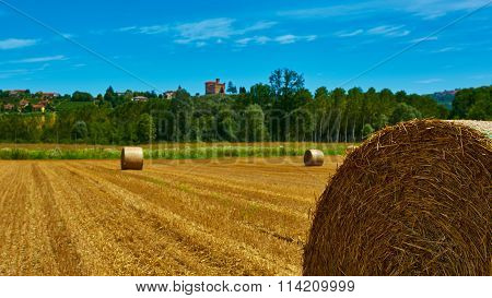 big roll harvested straw on the mown field